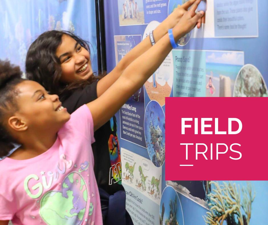 Field Trips (1)